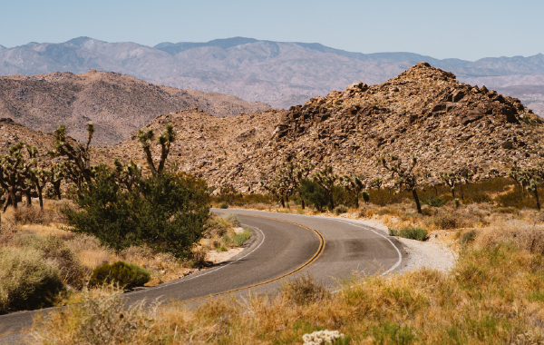 Landscape view of Joshua Tree National Park in Palm Springs, California