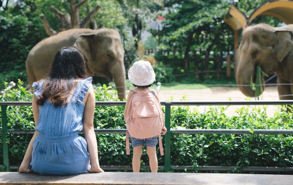 Mother and daughter at Jacksonville Zoo in Florida watching elephants
