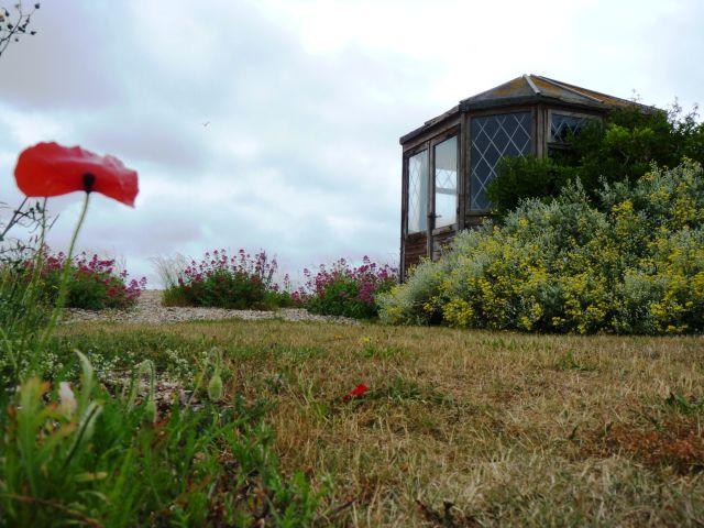 Garden and summer house