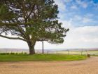 Your view from Friston Downs Cottage thumbnail