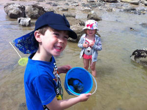 family holidays in eastbourne rockpooling
