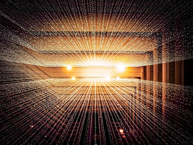 Data science & management