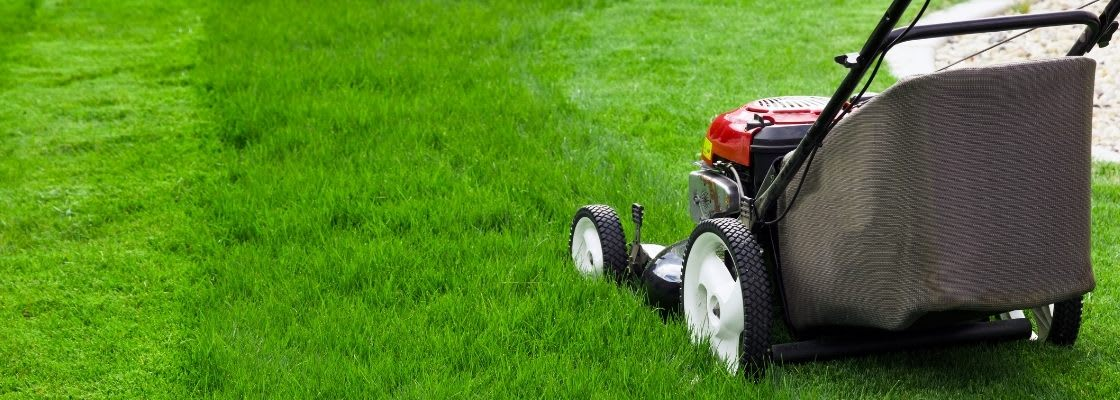 Best Time To Buy A Lawn Mower