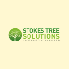 Stokes Tree Solutions