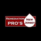 Remediation Pros