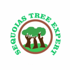 Sequoias Tree Expert