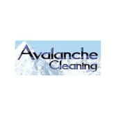 Avalanche Cleaning