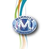 Mammoth Hand Car Wash & Detail Salon