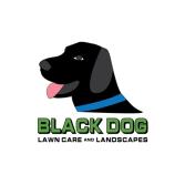 Black Dog Lawn Care & Landscapes LLC