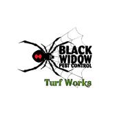 Black Widow Pest Control
