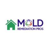 Mold Remediation Pros