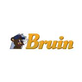 Bruin Corporation