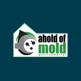 Ahold of Mold Environmental
