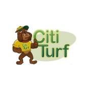 CitiTurf
