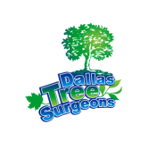 Dallas Tree Surgeons