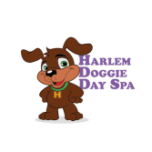 Harlem Doggie Day Spa