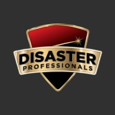 Disaster Professionals