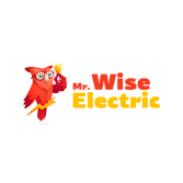 Mr. Wise Electric