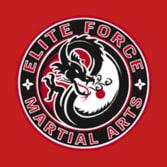 American Professional Martial Arts