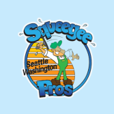 Squeegee Pros