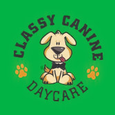 Classy Canine Daycare