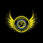 CrossFit Yellow Falcon