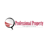 Professional Property Inspection