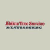Aldine Tree Services Houston Stump Grinding