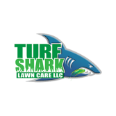 Turf Shark Lawn Care