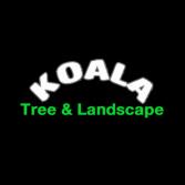 Koala Tree & Landscape
