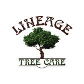 Lineage Tree Care