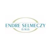 Endre Selmeczy DMD