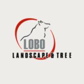 Lobo Landscape & Tree
