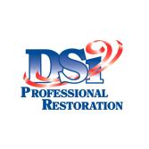 DSi Professional Restoration