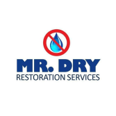 Mr. Dry Services