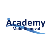 Academy Mold Removal Santa Clarita