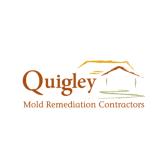 Quigley Mold Remediation Contractors