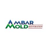 Ambar Mold Restoration