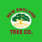 New England Tree