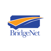 BridgeNet Technology Consultants, LLC