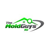 The Mold Guys NJ, LLC