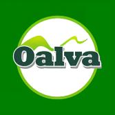 Oalva Inc