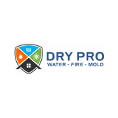 Dry Pro Water Fire Mold