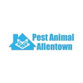 Pest Animal Removal Allentown