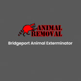 Bridgeport Animal Exterminator