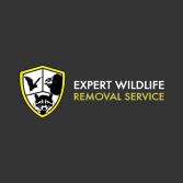 Expert Wildlife Removal & Pest