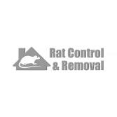 Rat Control & Removal