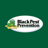 Black Pest Prevention