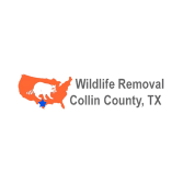 Wildlife Removal Collin County