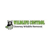 Downey Wildlife Removal